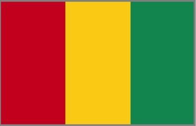 Republic of Guinea Visa