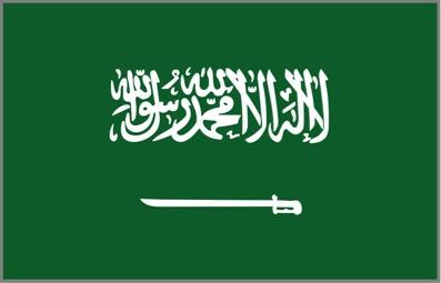 Saudi Arabia Tourist e-Visa